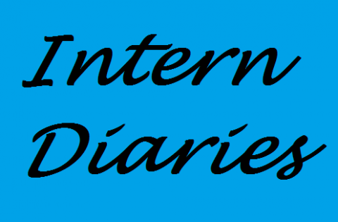 Intern Diary #1: What to Do Before Your First Day