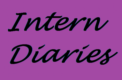 Intern Diary #2: What Not to Do as an Intern