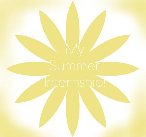 My Summer Internship Experience!