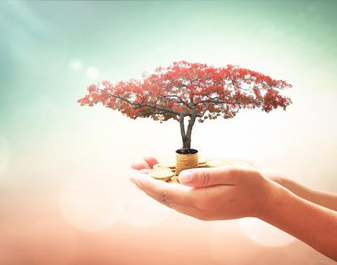 Pursue Your Philanthropic Passion