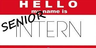 Why You Should Take An Internship